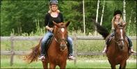 Activiteit Paardrijden - Letlandvakantie.nl